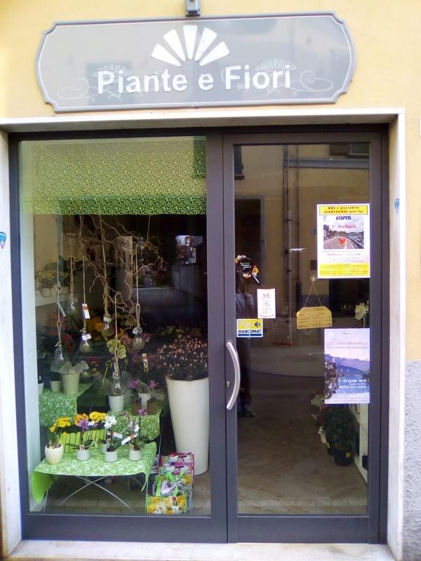 Piante e Fiori di Galli Luca Via Matteotti, 4, 20069 Vaprio d'Adda MI